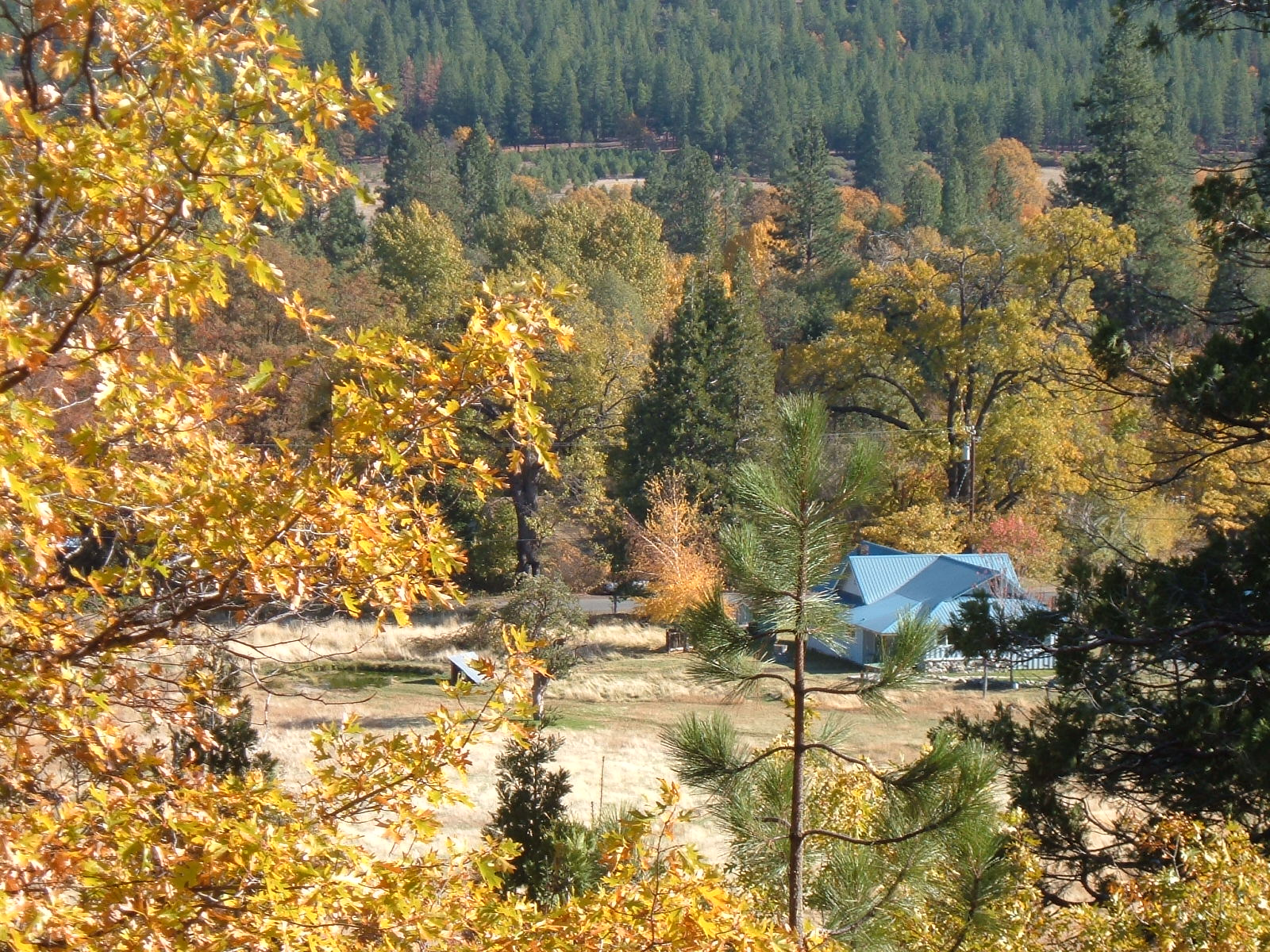 Waterfront Ranch With Water Rights For Sale Northern